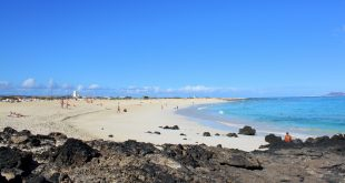 Nature & Wildlife in Fuerteventura